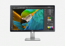 5 Best Monitors for Web Designing in 2021