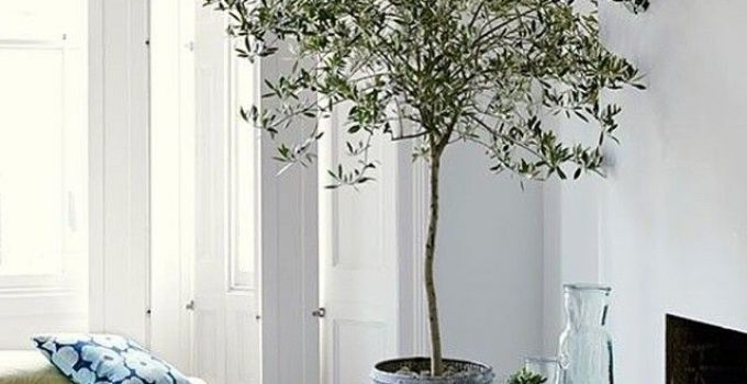 Best Artificial Trees For Indoors In 2021